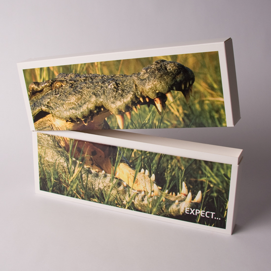Crocodile Presentation Box