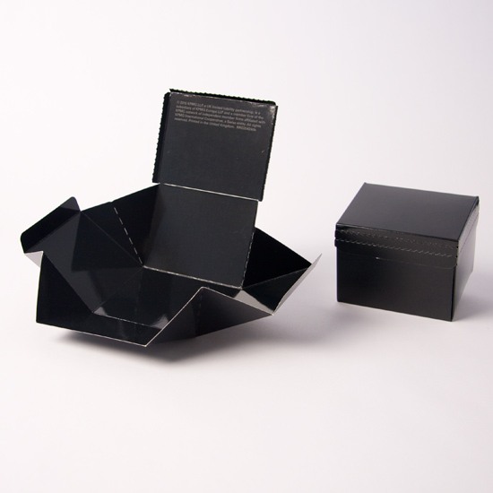 Hinged Lid with Fold Out Base